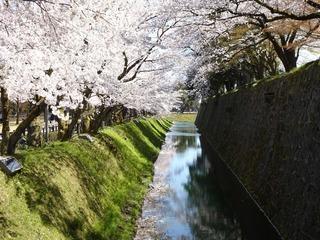 190414_kanazawa_castle.jpg