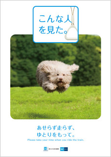 index_img_14.jpg