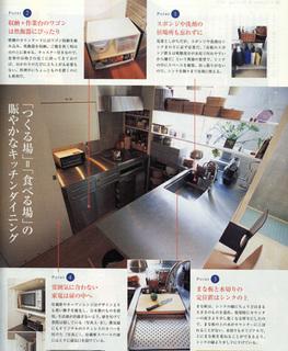 newhouse-gekko.JPG